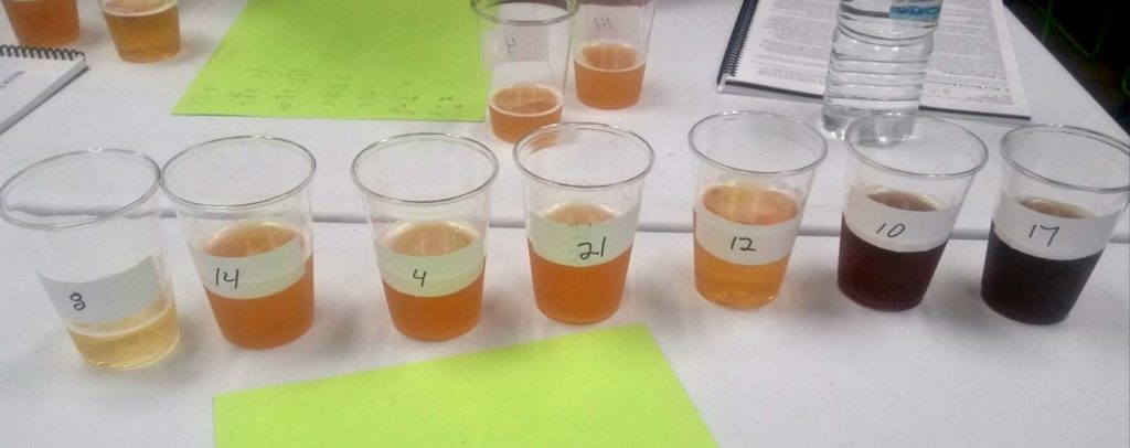 Sorting Beers in Beer Competition