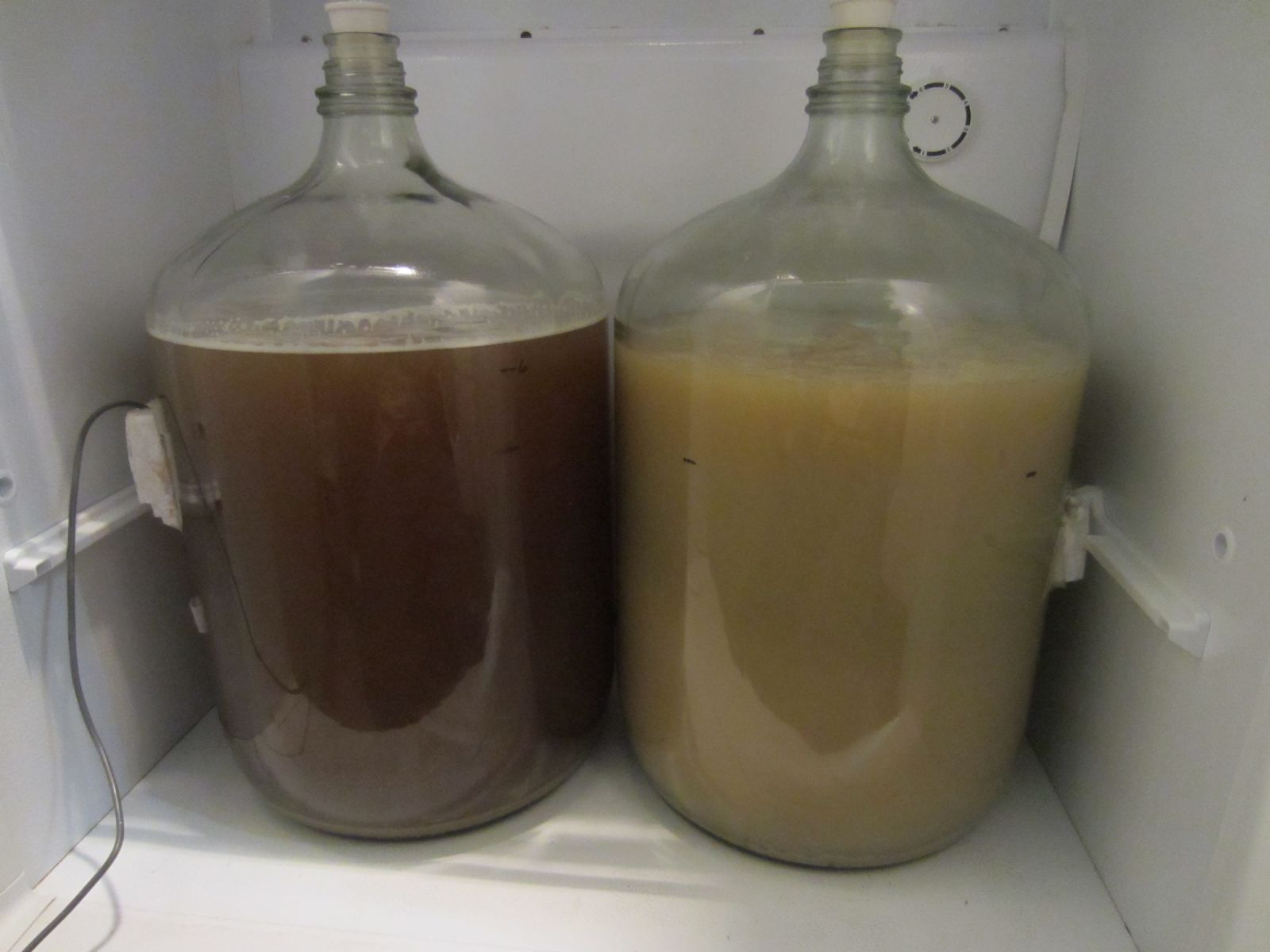 Clarified Wort Before and After