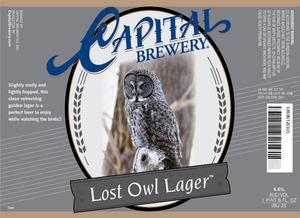 Capital Lost Owl