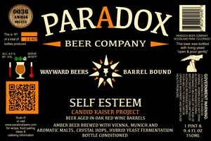 Paradox Beer Company Inc Self Esteem