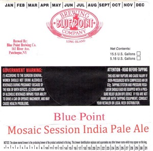 Blue Point Mosaic Session