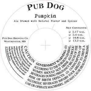 Pub Dog Pumpkin