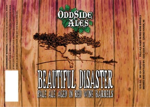 Odd Side Ales Beautiful Disaster