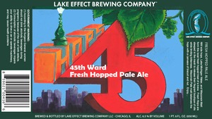 Lake Effect Brrewing Company 45th Ward