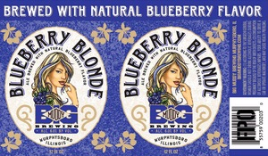 Big Muddy Brewing Blueberry Blonde