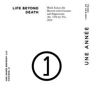 Une Annee Life Beyond Death