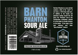 Triton Brewing Barn Phantom Sour Ale