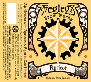 Fegley's Brew Works Apricot