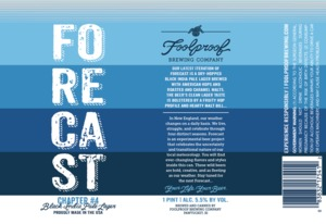 Foolproof Brewing Company Forecast Chapter 4