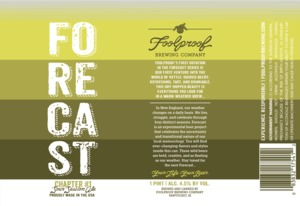 Foolproof Brewing Company Forecast Chapter 1