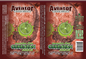 Aviator Brewing Company Cucumber-lime Cukeatan Saison