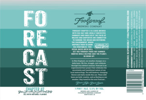 Foolproof Brewing Company Forecast Chapter #2